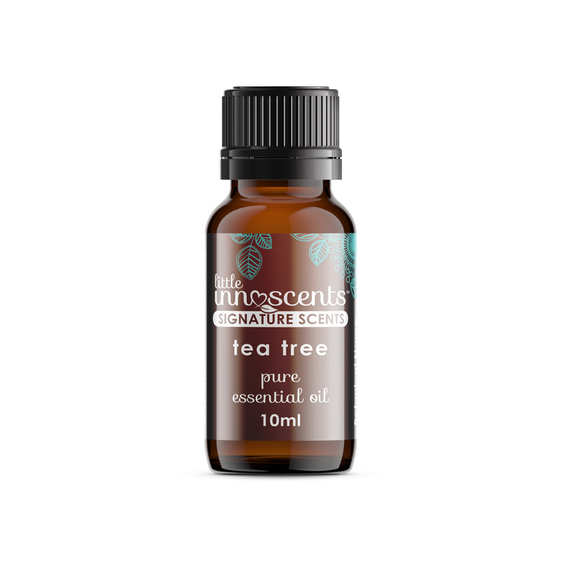 Essential Oil 10ml Tea Tree